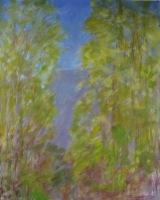 Treetops Five